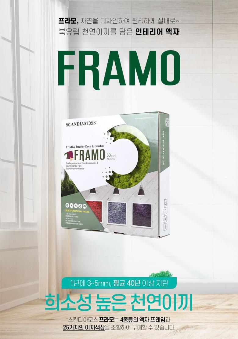 스칸디아모스 프라모 인테리어소품 스칸디아모스액자 이끼액자 프라모 framo 인테리어액자 주문제작 공기정화 실내습도 화분장식 인테리어장식