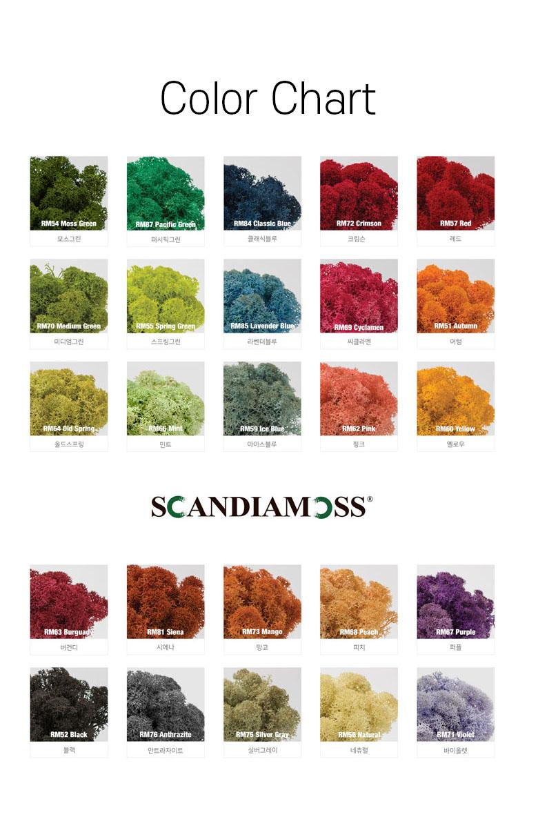 스칸디아모스 색상표